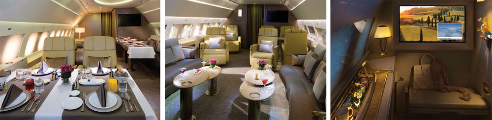 Emirates Airline's recently launched Executive Private Jet Service uses A319, accommodating up to 19 passengers.