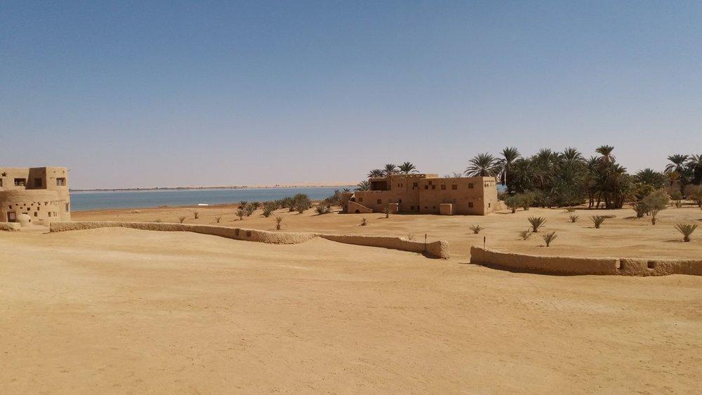 desert 18.jpg