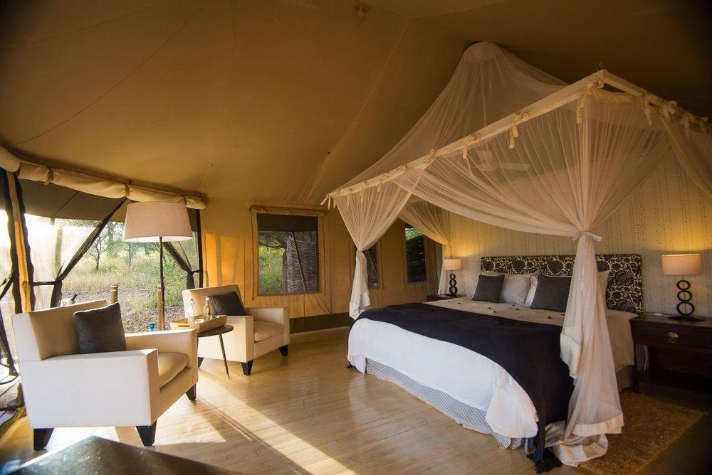serengeti safari4.jpg