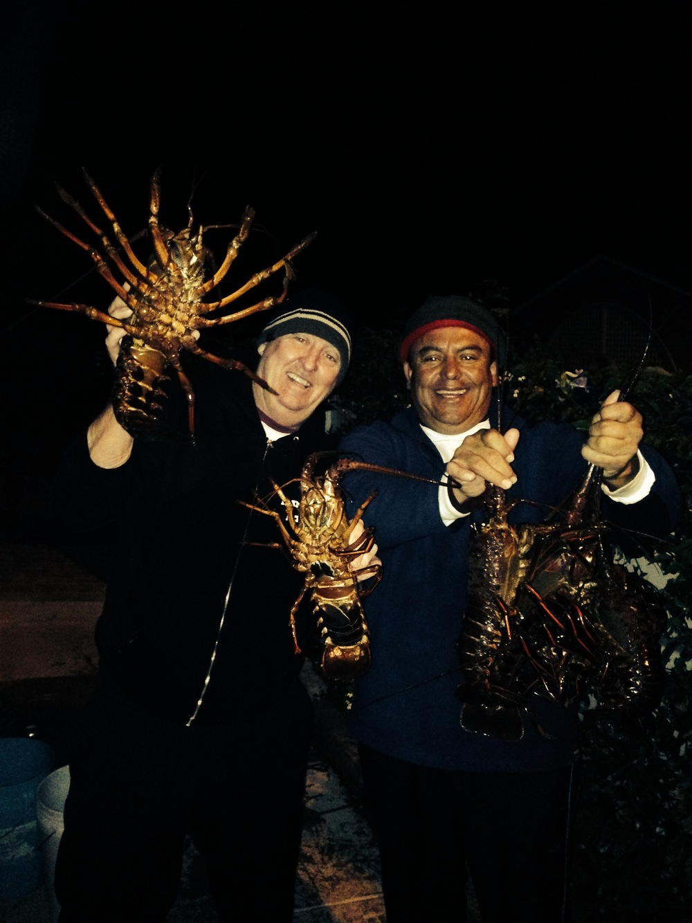 Lobsters at Avalon Catalina Island