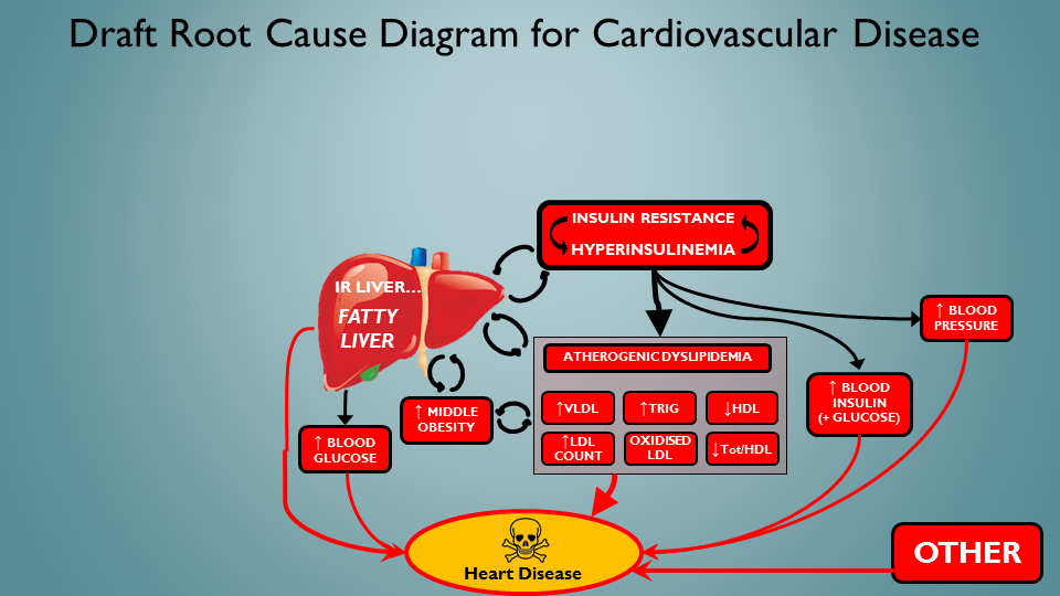 The common-or garden Insulin Resistance / Fatty Liver / Dyslipedemia / Met Syn Riff...