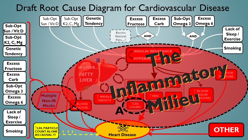Ok, lot going on in this CVD-driving scenario - including ApoB interacting in the mess...