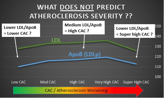 "Bum steer there guys...""Cholesterol"" can be good when it's low - and bad when it's low too! Don't go by these measures...note around 17% of the super-high CAC group were on Lipid-lowering, versus ~14% of the very-high CAC group - so the poor predictability of ""cholesterol"" wasn't due to that factor... ;-)"