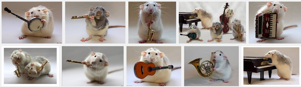 rats playing instruments