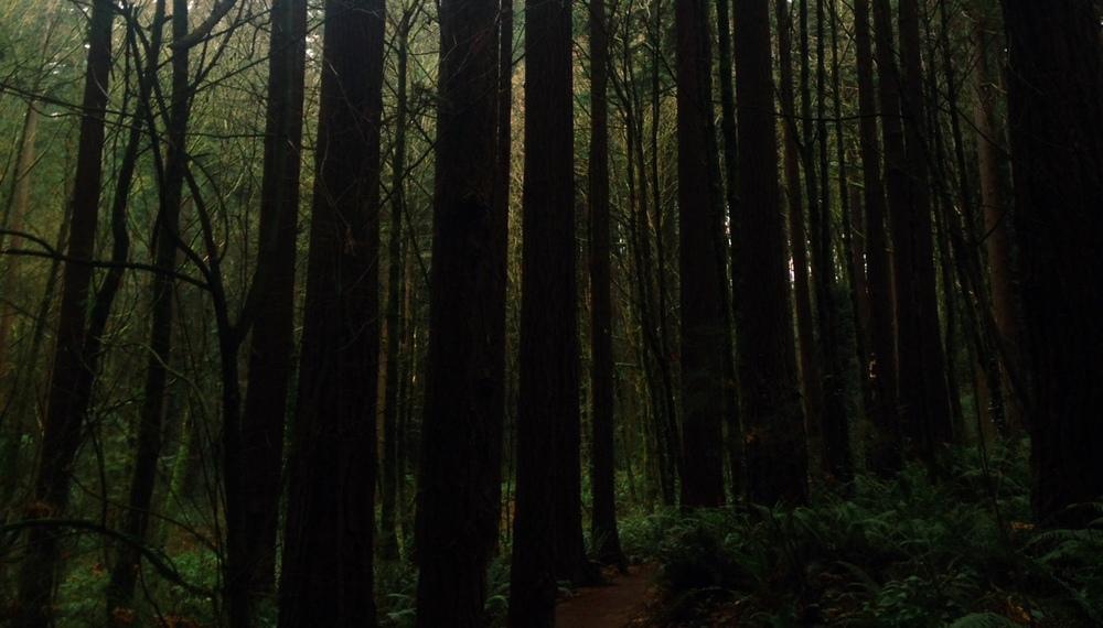 Portland is Jurassic Park