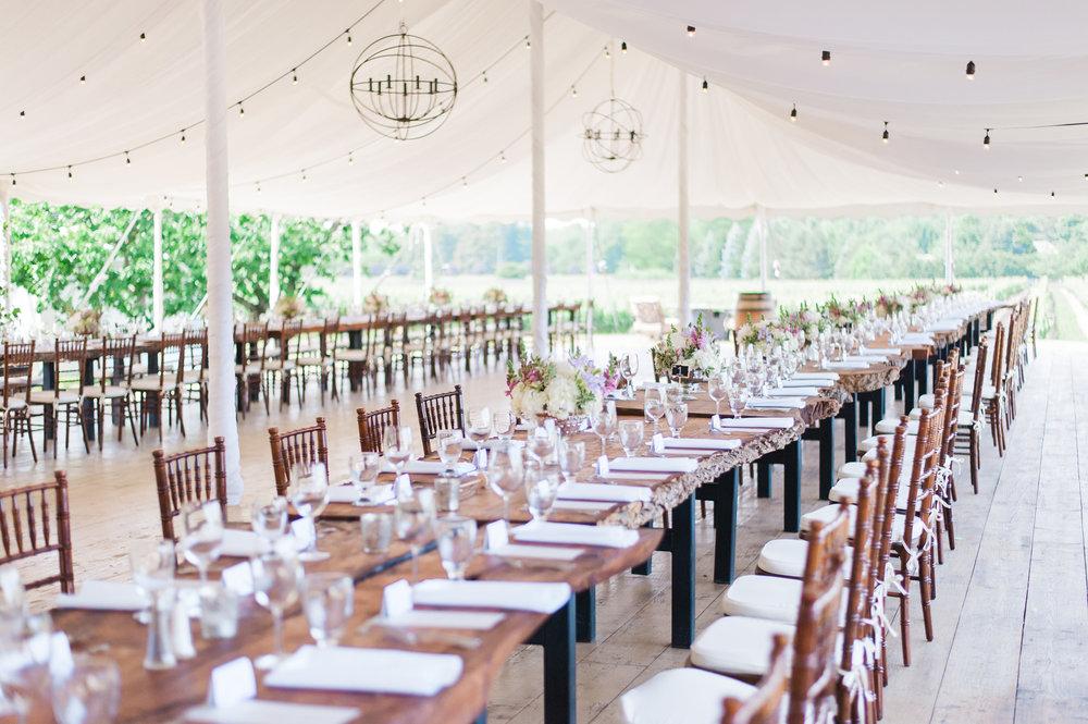 Niagara-Weddings-Gracewood-Estate-Kurtz-Orcahrds-photography-by-Gemini-Photography-029.JPG