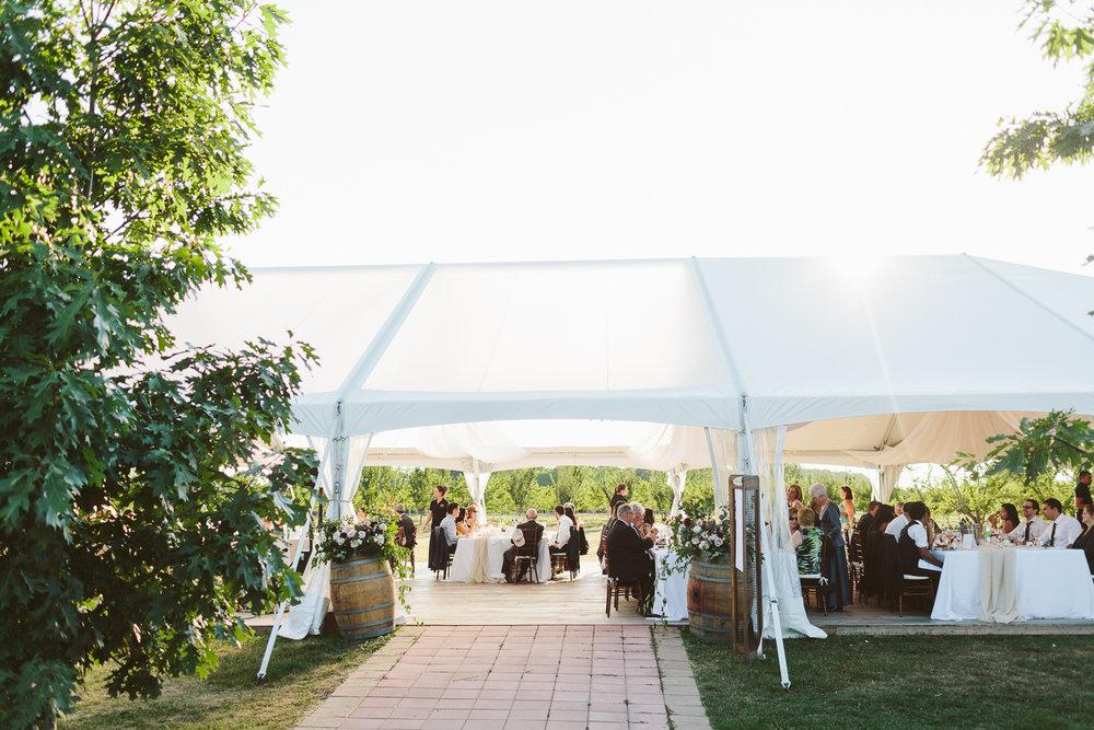 Kurtz Orchard wedding - A Brit & A Blonde-171.jpg