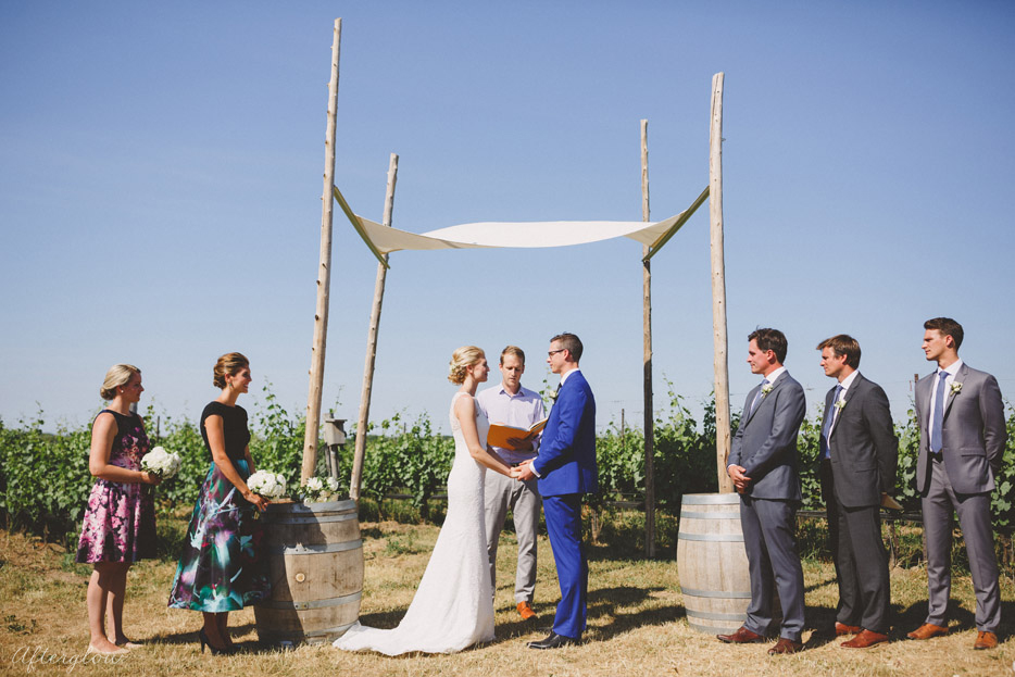 049-ravine-vineyard-wedding-ceremony-in-the-vineyard.jpg