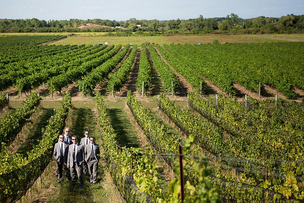 Ravine-Vineyard-Wedding-Vineyard-Bride-Photo-By-Andrew-Mark-Photography-012.jpg
