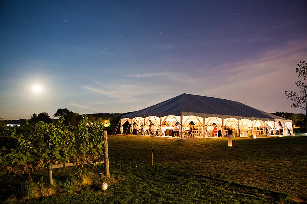 Ravine-Vineyard-Wedding-Vineyard-Bride-Photo-By-Andrew-Mark-Photography-048.jpg