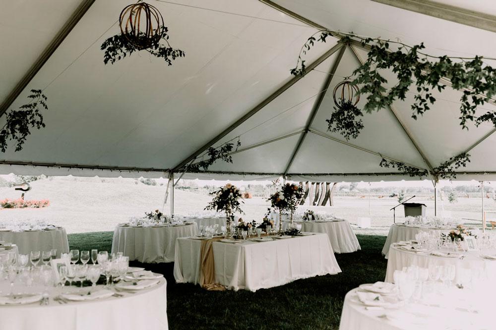 13th-street-winery-wedding-Vineyard-Bride-photo-by-Ally-Nicholas-040.jpg