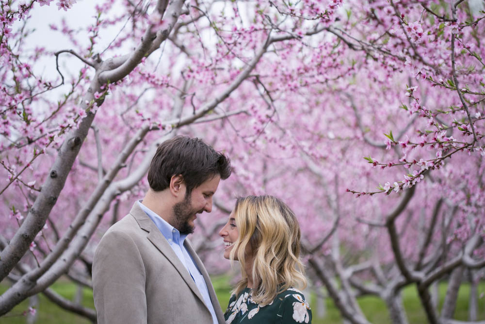 philiosophy-studios-engagement-session-spring-orchard-blossoms-vineyard-bride-swish-list-vendor-niagara-toronto-wedding-photographer026.JPG