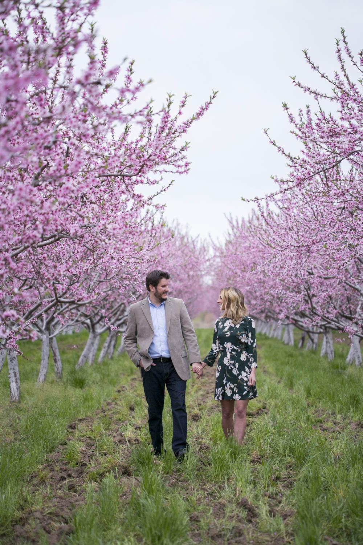 philiosophy-studios-engagement-session-spring-orchard-blossoms-vineyard-bride-swish-list-vendor-niagara-toronto-wedding-photographer027.JPG