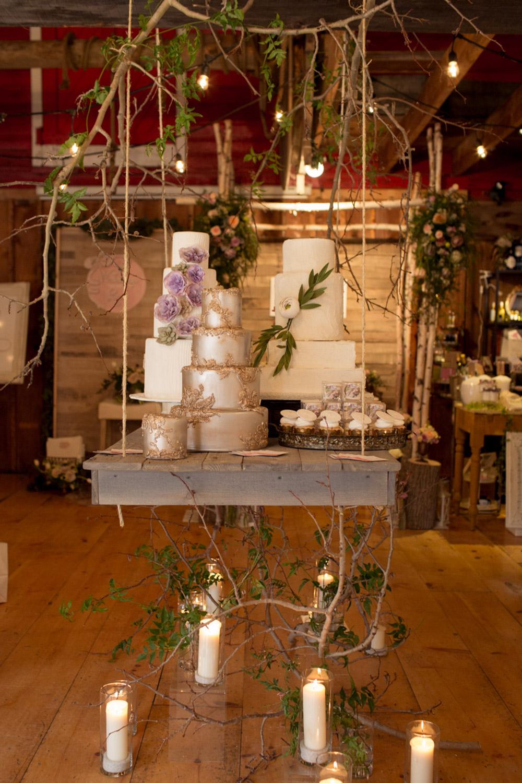vineyard-bride-the-first-look-wedding-show-anniversary-niagara-toronto003.jpg