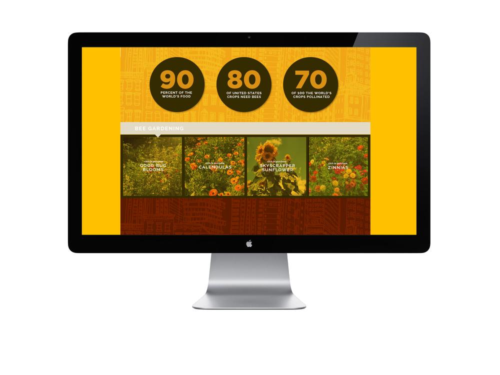 BeeWebsite06.jpg