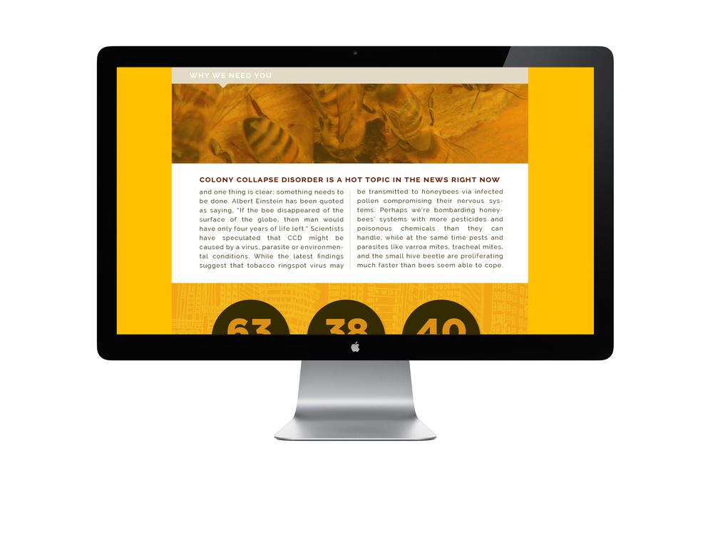 BeeWebsite11.jpg