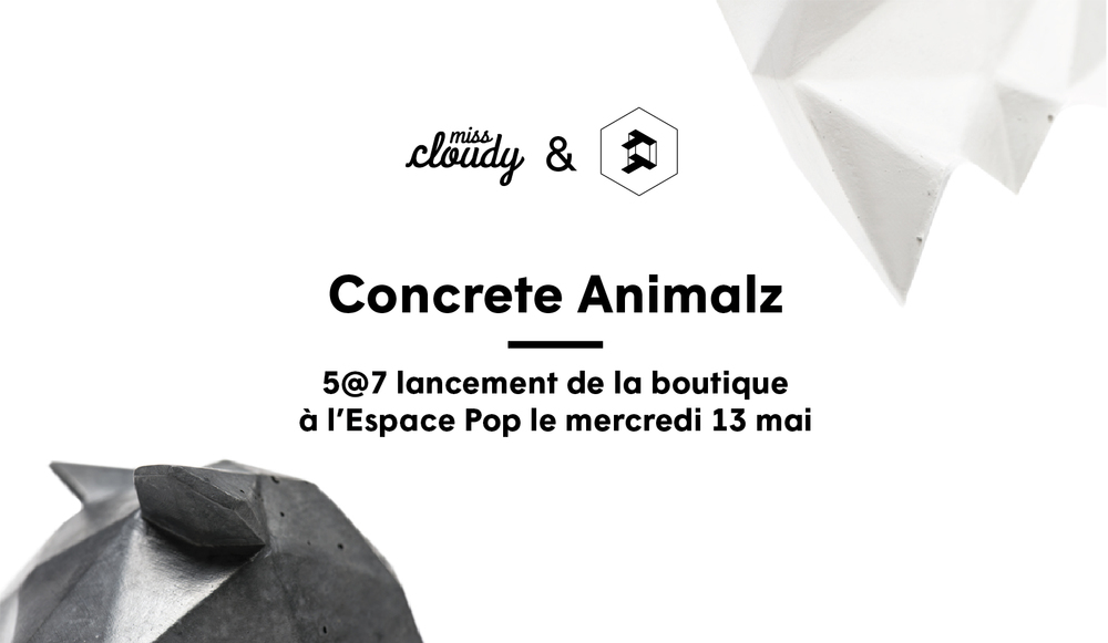 miss-cloudy-concrete-animalz-thomas-pagliuca-montreal-shop-collection.jpg
