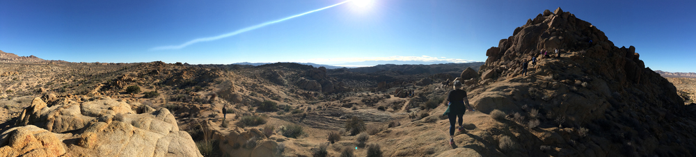 Panorama, Joshua Tree National Park