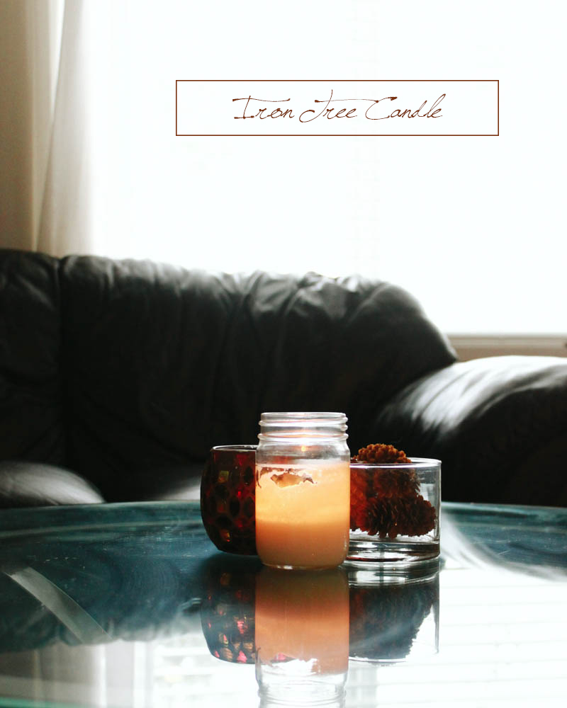 Iron Tree Candle | Mallorie Owens
