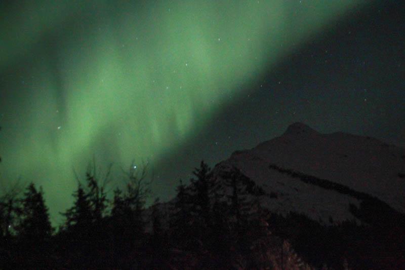 Aurora Borealis | Mallorie Owens