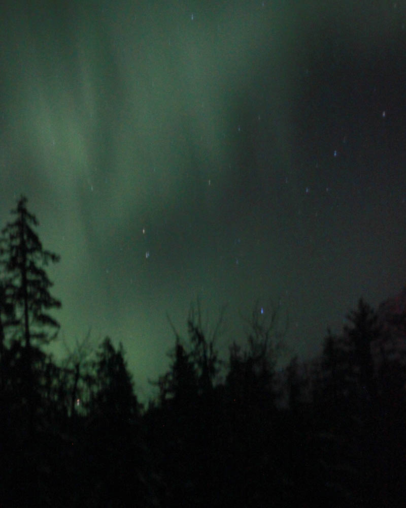 Northern Lights | Mallorie Owens