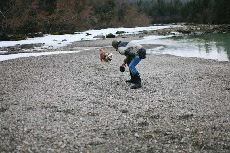 Alaskan Malamute at Ten Months | Mallorie Owens