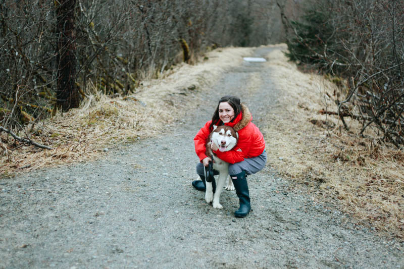 Adorable Alaskan Malamute | Mallorie Owens