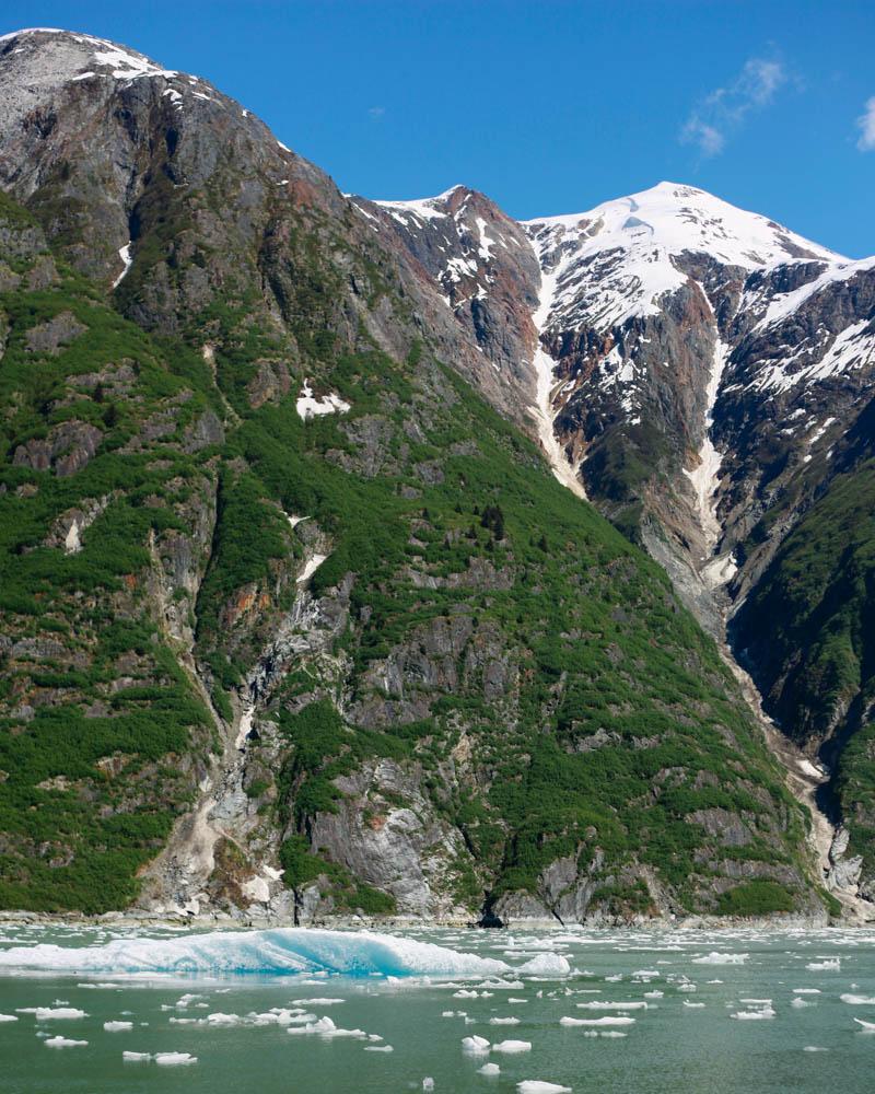Glacier Cruise | MALLORIE OWENS