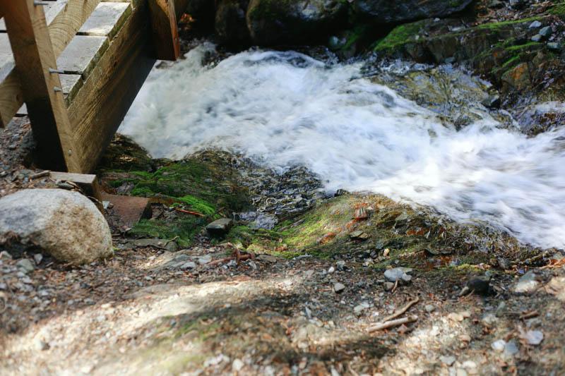 Juneau, Alaska ≫≫ West Glacier Trail | MALLORIE OWENS