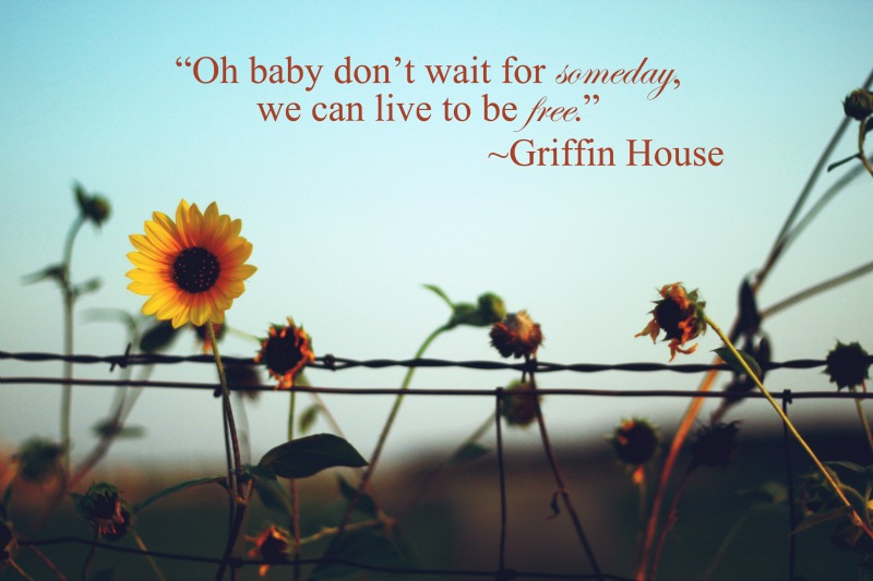 Live to be Free Lyrics by Griffin House | MALLORIE OWENS