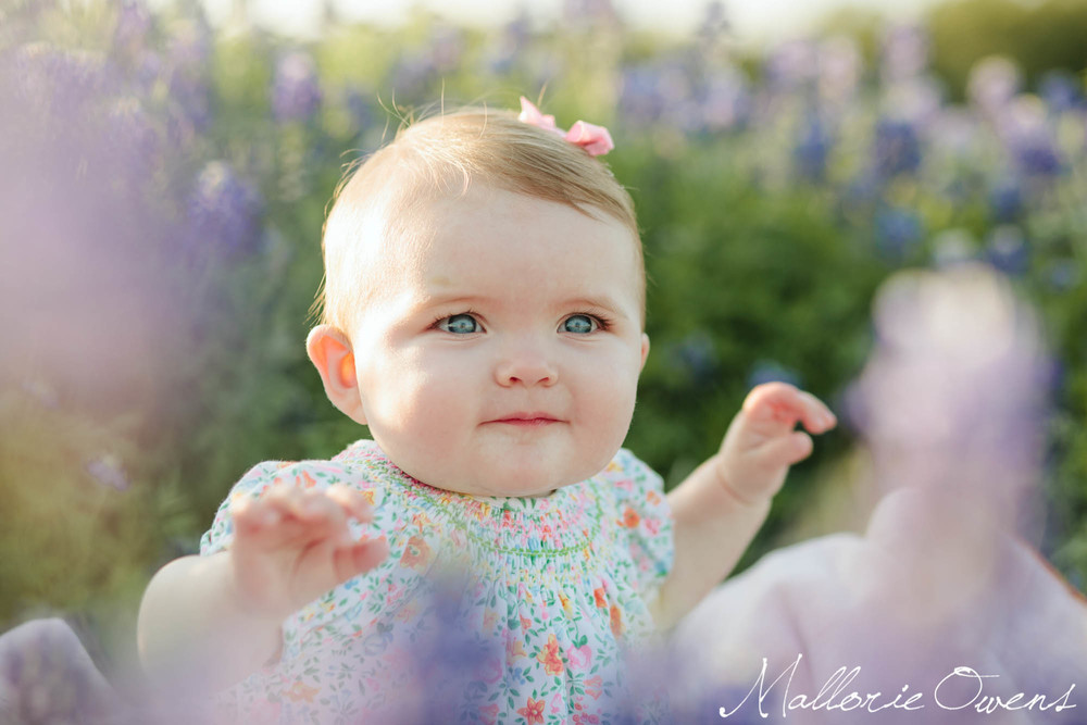 Spring Family Photos in Bluebonnets in Austin, Texas | MALLORIE OWENS