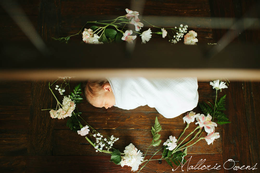 Newborn Photographer | MALLORIE OWENS
