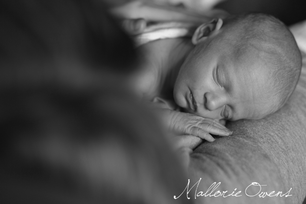 Fine Art Newborn Photography | MALLORIE OWENS