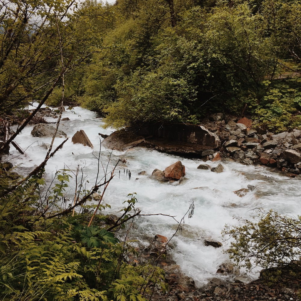 Hiking Trail in Juneau, Alaska | Gold Creek Flume Trail | MALLORIE OWENS