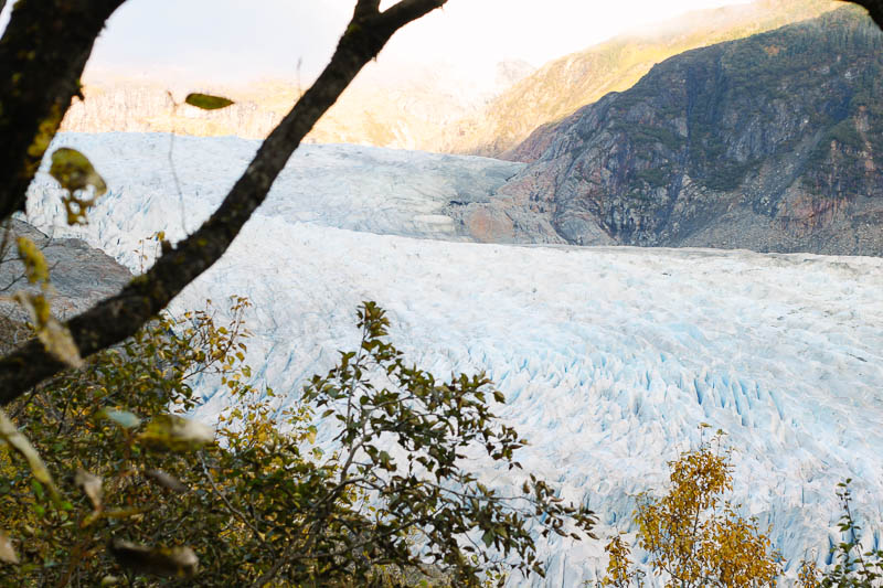 Juneau Alaska Vacations | West Mendenhall Glacier Hiking Trail | Mallorie Owens
