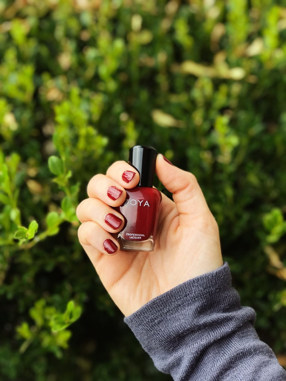 Zoya Blood Red Fall Polishes 10 Free | MALLORIE OWENS