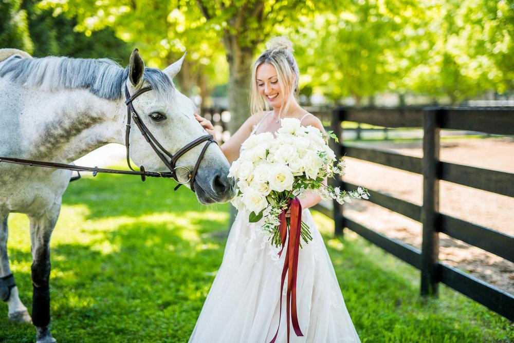 Royalton Equestrian - Styled Colab Shoot