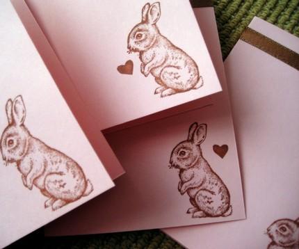 Bunny Notes