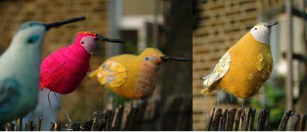 abigailbrownbirds.jpg