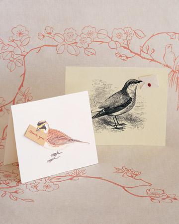 Messenger Birds