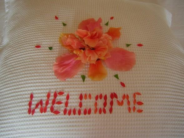 Welcome petals