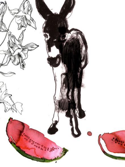 Donkey Watermelon
