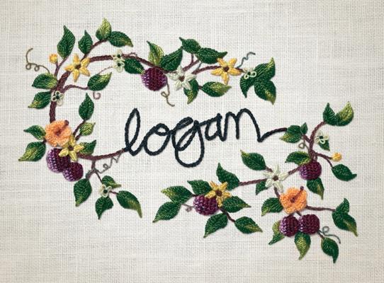 Logan Wine Bottle Detail 3
