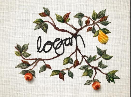 Logan Wine Bottle Label Detail 1