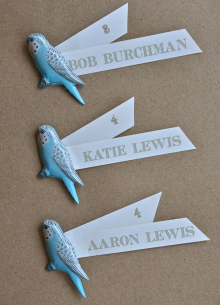Budgie pin seating cards