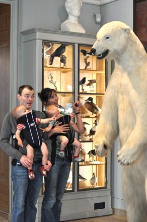 Polar Bear Musee de la Chasse