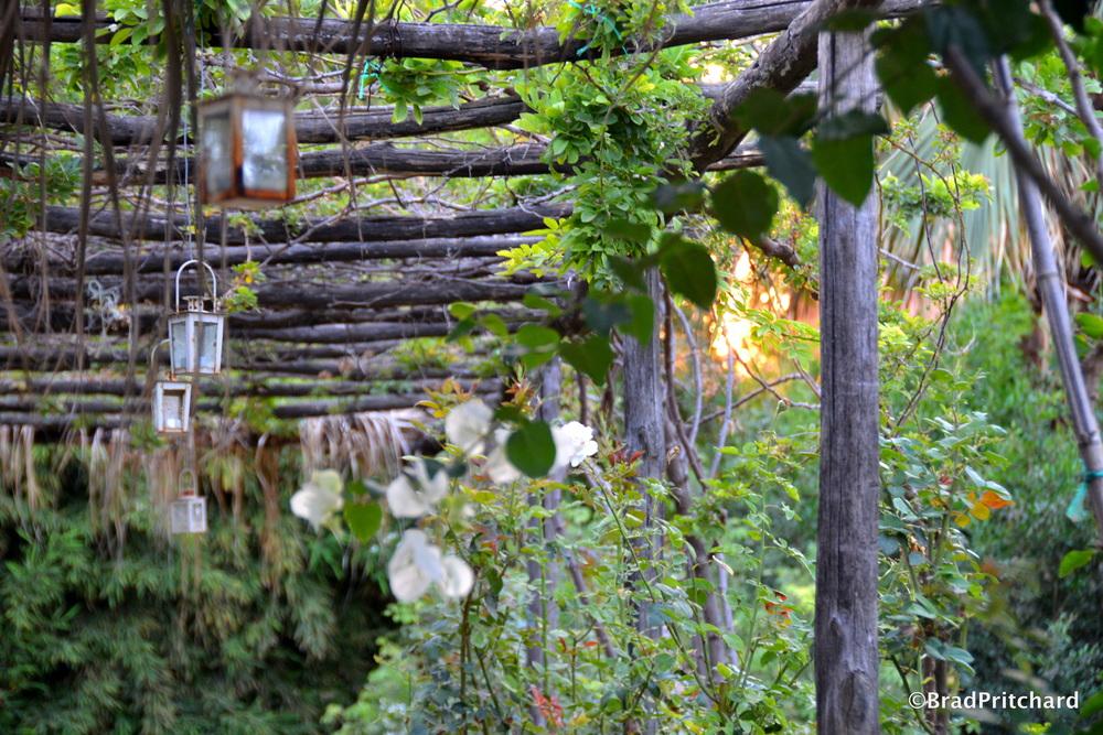 Metohi Kindelis: The beautiful gardens of the property