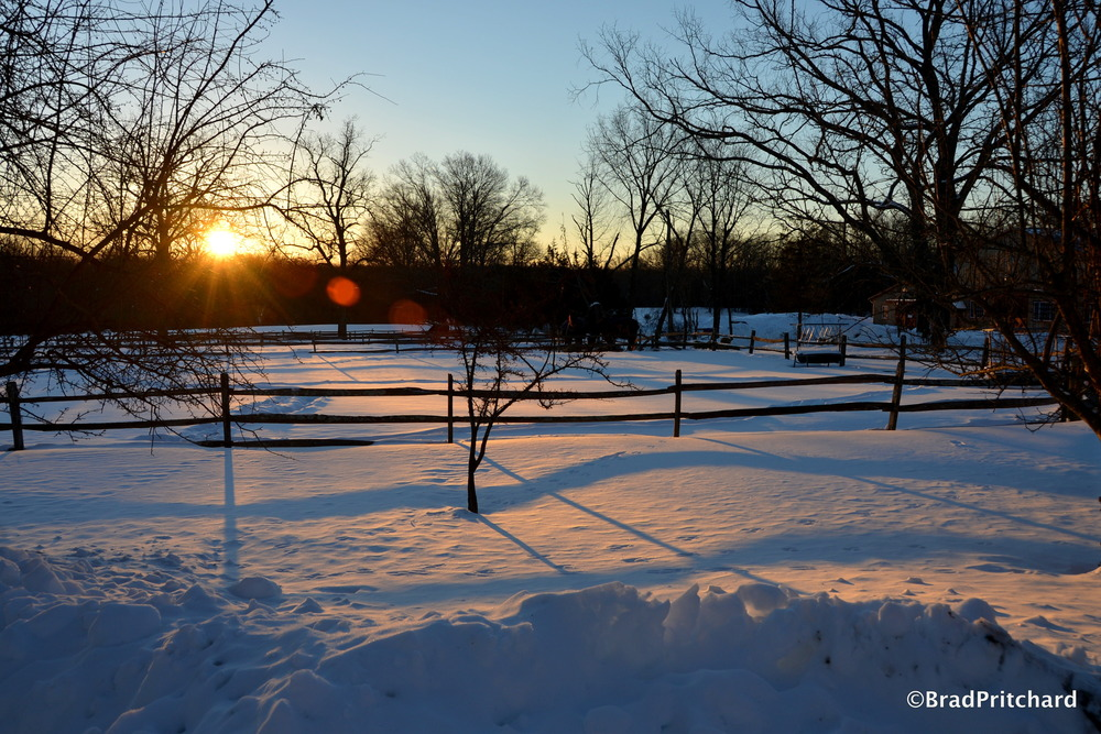 La Luna Farm Sunrise 2
