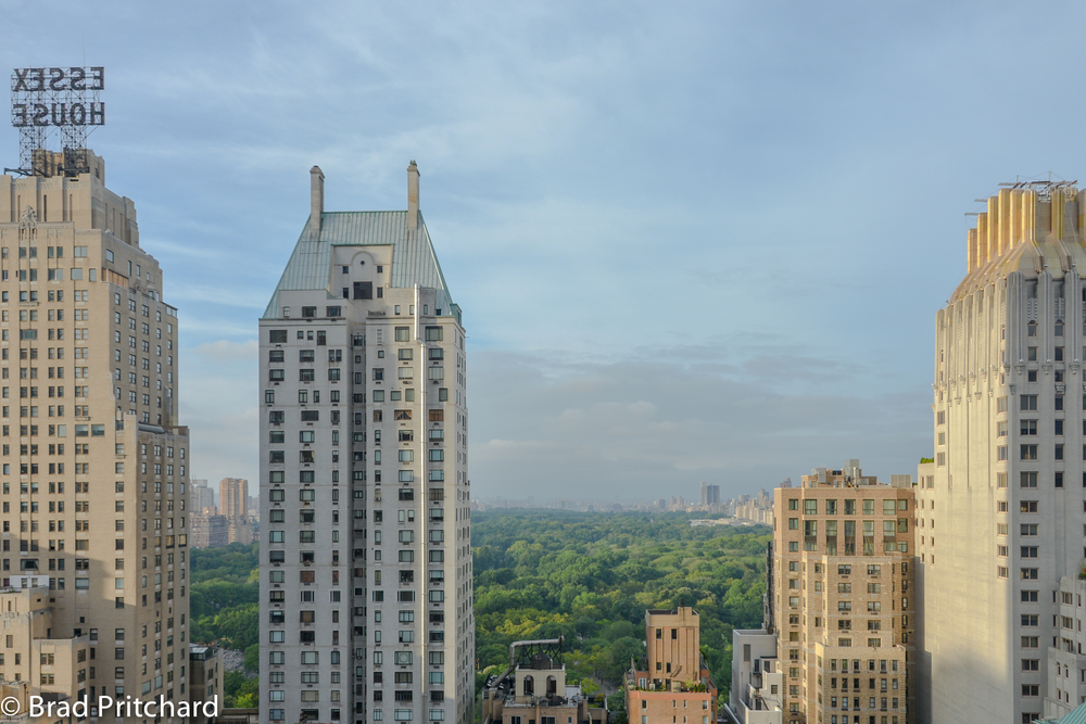 The view of Central Park from The Roof