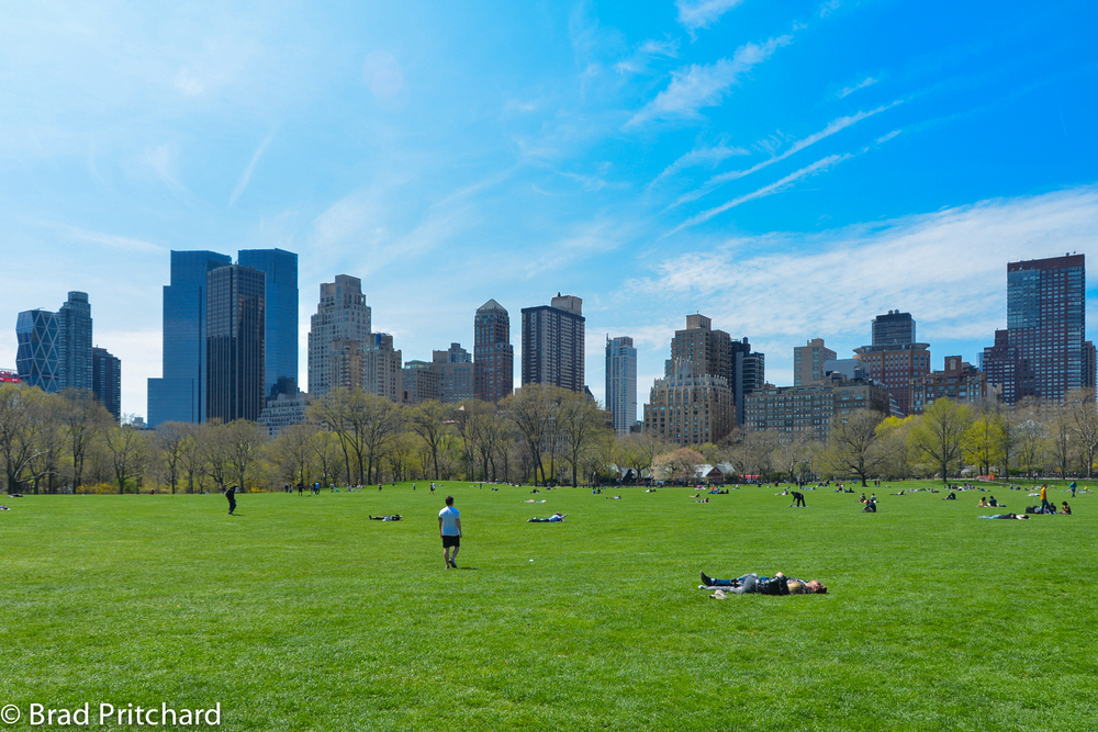 Looking West-southwest from Sheep Meadow